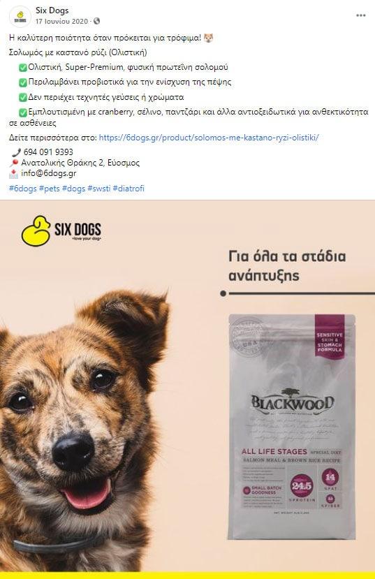six dog post 3 facebook