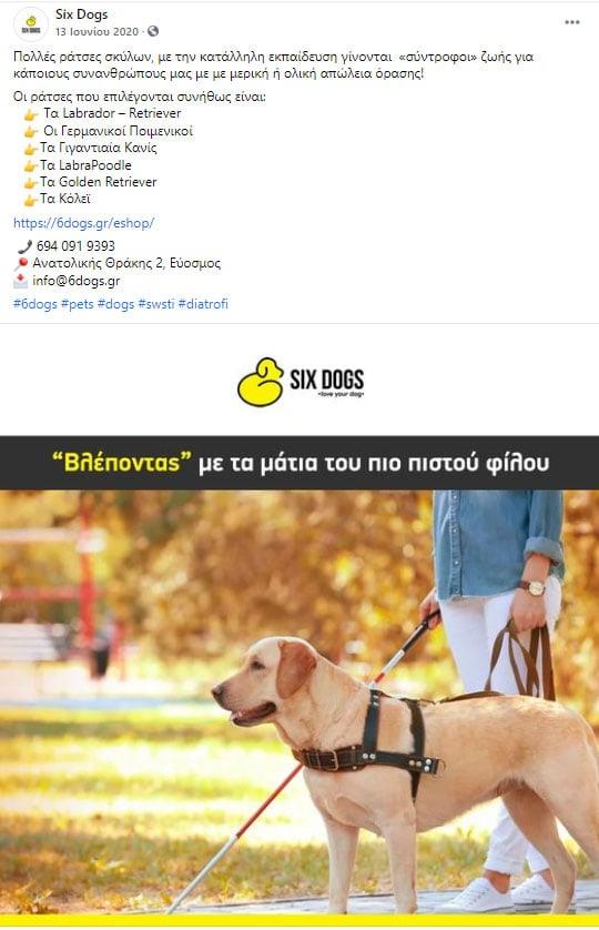 six dog post 2 facebook